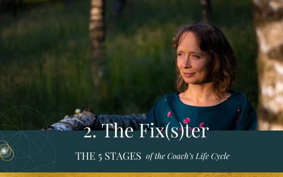 The 5 Stages of the Coach's Life Cycle – The Fix(s)ter