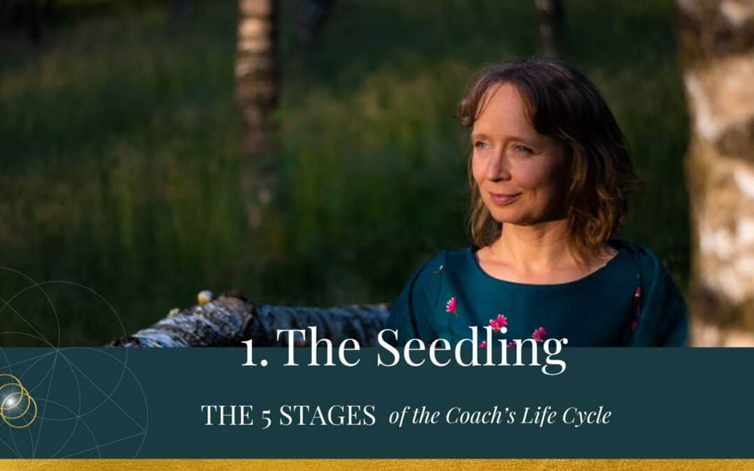 The 5 Stages of the Coach's Life Cycle – The Seedling
